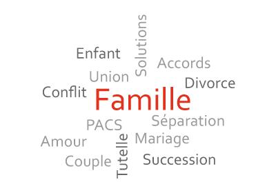 Emilie MOREAU AVOCAT - Compétences famille